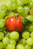 Nectarine and grape Royalty Free Stock Photo