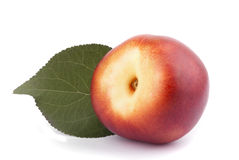 Nectarine with green leaf Stock Photos
