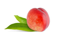 Nectarine with green leaves Stock Photo