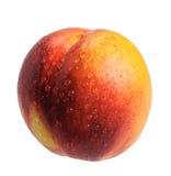 Nectarine, isolated Stock Image