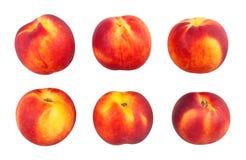 Nectarine. Isolated on white background Royalty Free Stock Images