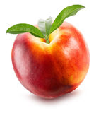 Nectarine with leaves isolated on the white background Stock Photography