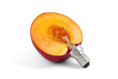 Nectarine lightbulb, concept of green energy Stock Photography