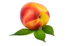 Nectarine one fruit on white Royalty Free Stock Images
