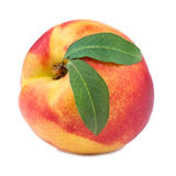 Nectarine or peach in close up Royalty Free Stock Image
