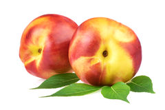 Nectarine peach fruits Stock Photos