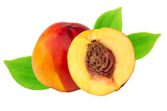 Nectarine peach green leaves isolated on white background Stock Photography