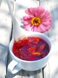 Nectarine, peach jam. Royalty Free Stock Photography