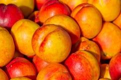 Nectarine on pile Stock Photo
