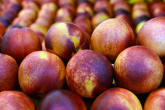 Nectarine. Placed on exhibition booth for sale royalty free stock photography