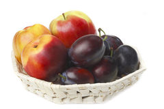 Nectarine,plums and apple Royalty Free Stock Image