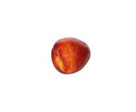 Nectarine. Ripe juicy nectarines on white background Stock Photos