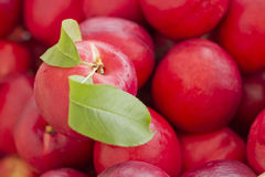 Nectarine rouge organique images stock