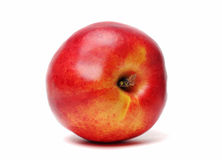 Nectarine simple d'isolement Image stock