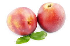 Nectarine sur le blanc images stock