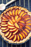 Nectarine tart Royalty Free Stock Photos