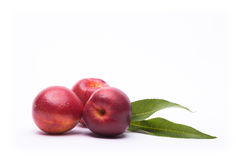 Nectarine. On a white backgroundon white composition background Stock Photography