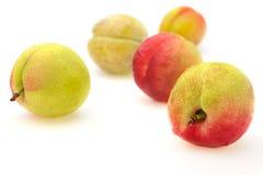 Nectarine Royalty Free Stock Images