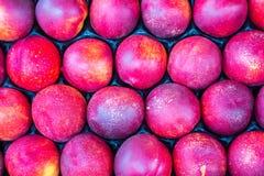 Nectarinemarkt Royalty-vrije Stock Foto's