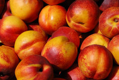 Nectarines. In a farmers market on a sunny day Stock Photo