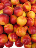 Nectarines. Stock Foto
