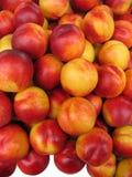 Nectarines. Stock Photo