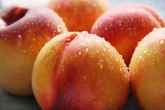 Nectarines. Stock Photos