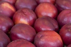 Nectarines Royalty Free Stock Photos