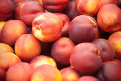Nectarines. Basket of nectarines in a market Stock Images
