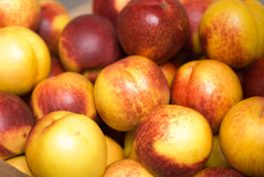 Nectarines Photo stock