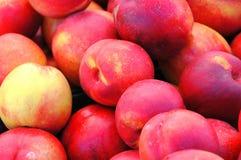 Nectarines Photos libres de droits