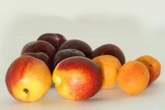 Nectarines, abrikozen en pruimen Royalty-vrije Stock Afbeeldingen