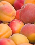 Nectarines Abstract Stock Photo