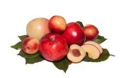 Nectarines and apples on green leaves stock image