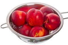 Nectarines  in colander Stock Image