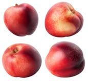Nectarines d'isolement Collection de différents fruits de nectarine d'isolement sur le fond blanc avec le chemin de coupure Image libre de droits