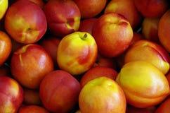 Nectarines displayed for market Royalty Free Stock Image
