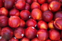 Nectarines in een bak stock fotografie