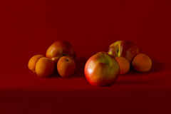 Nectarines en abrikozen Stock Foto's