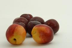 Nectarines en pruimen Royalty-vrije Stock Foto