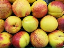 Nectarines fruits Stock Photos