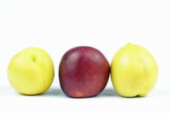 Nectarines jaunes Photo stock