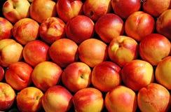 Nectarines klaar voor verkoop Royalty-vrije Stock Foto's
