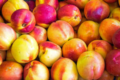 Nectarines on a market Stock Photography
