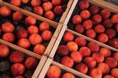Nectarines at a market Royalty Free Stock Image