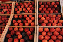Nectarines at a market Stock Photos
