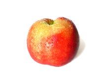 Nectarines OP WIT worden GEÏSOLEERD dat Stock Foto
