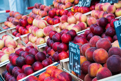 Nectarines and peaches Royalty Free Stock Photography