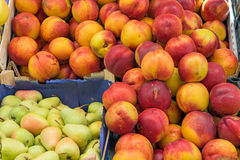 Nectarines and pears at a market Royalty Free Stock Images