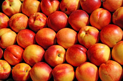 Nectarines ready for sale. Ripe nectarines ready for sale Royalty Free Stock Photos